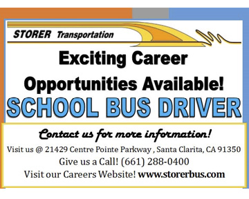 Storer - Bus Driver Wanted